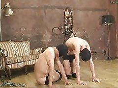 Asian, Femdom, Japanese, Mistress, BDSM