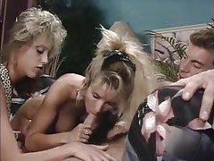 Blonde, Blowjob, Cumshot, Group Sex, Hardcore